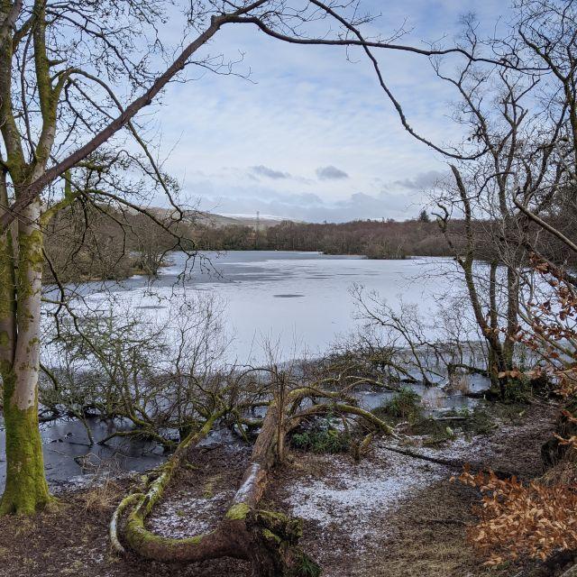 Loch Mugdock