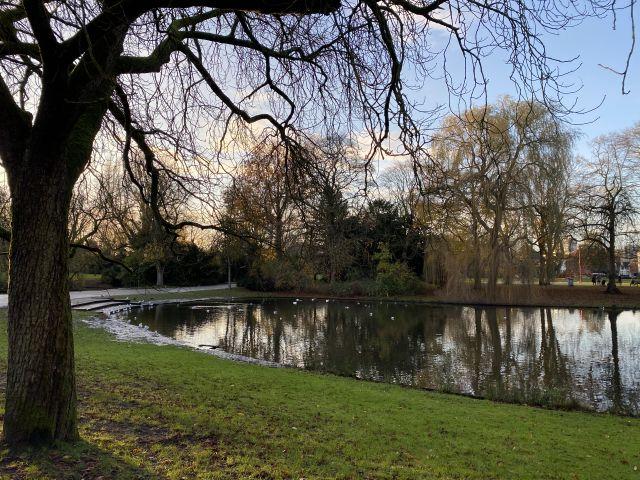 Man sieht einen Teich der von Grünfläche umgeben ist.