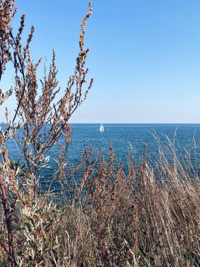 Blick auf die Ostsee auf der ein Segelboot zu sehen ist