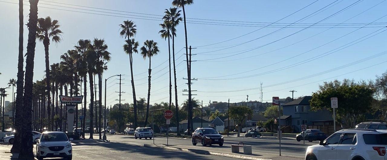 Straße mit Palmen, Mittagssonne