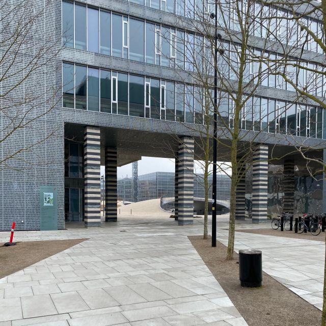 Der Weg führt zu dem Campus-Platz.