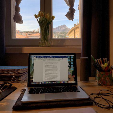 Arbeitsplatz am Fenster mit Laptop und Blumen