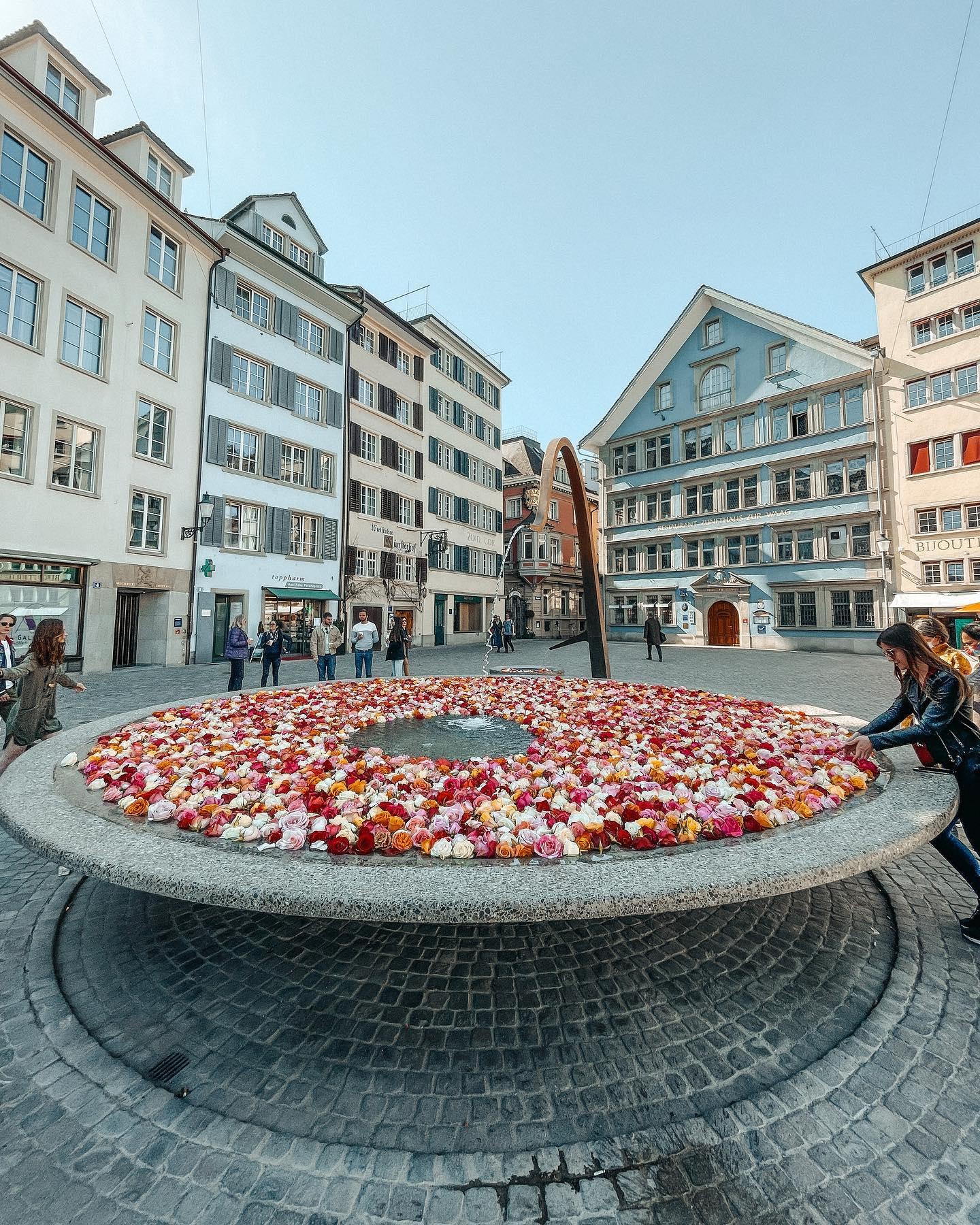 Aktuell gibt es eine wunderschöne Aktion in Zürich 🌹 Um die Stadt in Farbe…