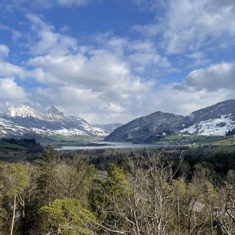Im Vordergrund Wald und ein See, im Hintergrund Berge