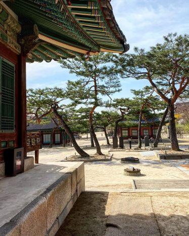 Frühlingssaison in Changdeokgung [창덕궁], einer der größten Paläste…