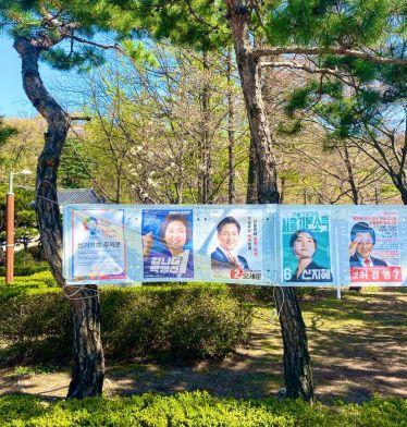 Wahlplakate im Park: aktuell wird in Seoul ein:e neue:r Bürgermeister:in…