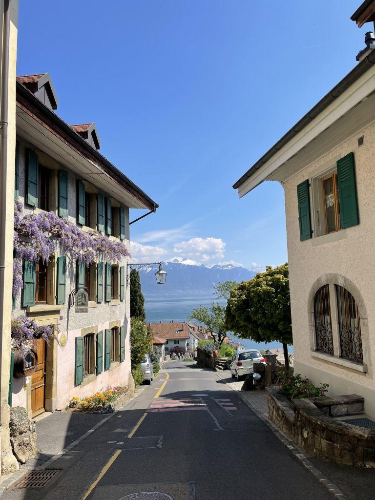 ein kleines schweizer Dorf mit romantischen Häusern und blumen, dahinter Blick auf die Berge und den See