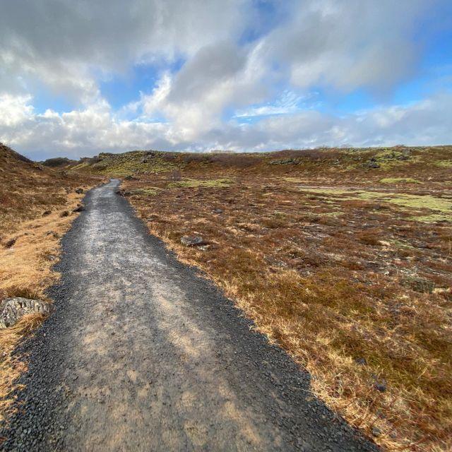 Eine halbe Stunde mit dem Bus aus Reykjavik rausfahren, nochmal eine halbe…