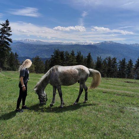 Empfehlung: Ausritt zum Aussichtspunkt im Borjomi National Park 🌳…