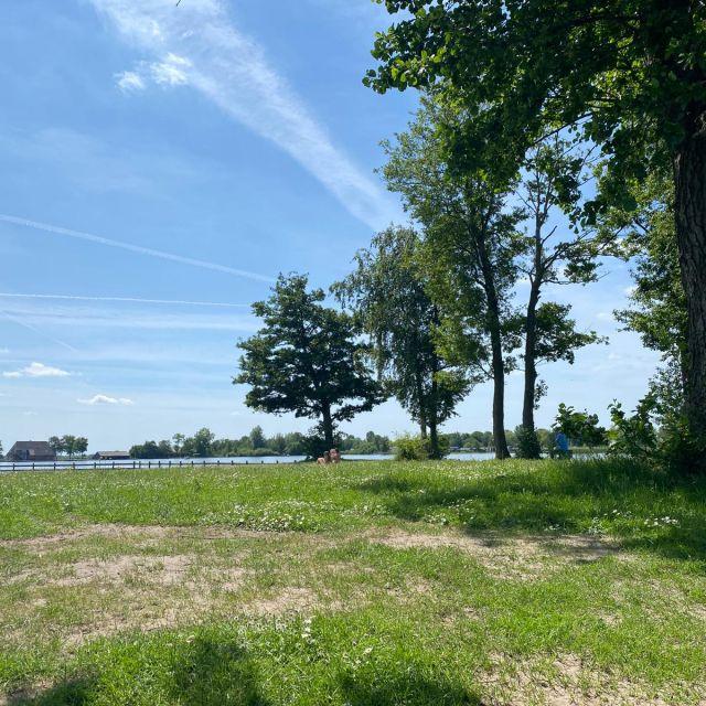 Hier erkennt man im Vordergrund eine Grasfläche. Rechts im Bild sieht man mehrere Bäume. Im Hintergrund erkennt man das Wasser des Sees.