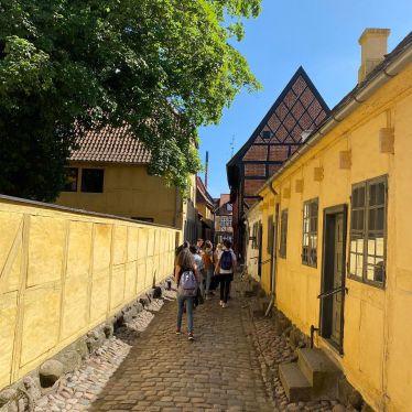 Trip to Odense#erasmus #erlebees #studierenweltweit #odense #travel #esn