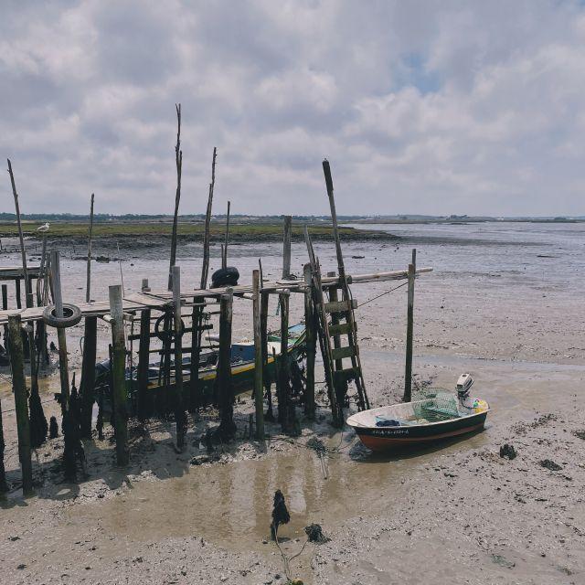 Ein kleines Fischerboot liegt auf dem schlammigen Meeresgrund.