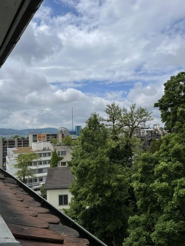 Der Blick aus dem Fenster. Rechts sind Bäume zu sehen, links die Skyline von Zürich-West.