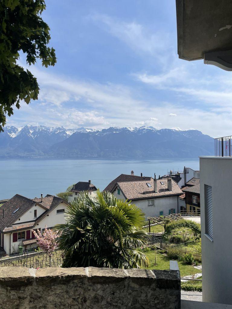 im Vordergrund sieht man Häuser und eine Palme, im Hintergrund Berge und den Genfersee