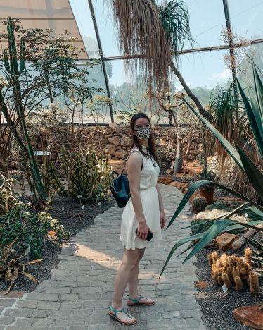 Botanischer Garten Zürich a.k.a. der perfekte Ort, um Fernweh zu stillen 🌵…