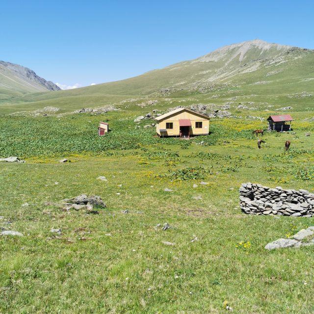 Schutzhütte, Pferde, Berge