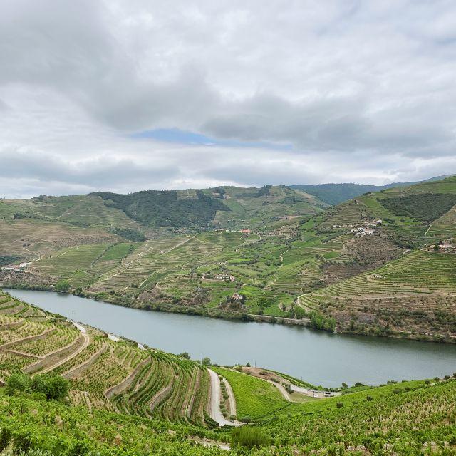 Sicht auf das grüne Douro-Tal durch das sich der Fluss schlängelt.