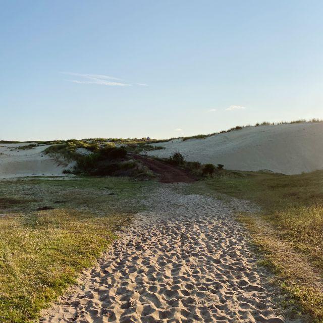 Ein Sandweg führt zum Strand.