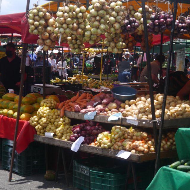 Ein Marktstand in der Sonne mit Zwiebeln und Knoblauch im Angebot