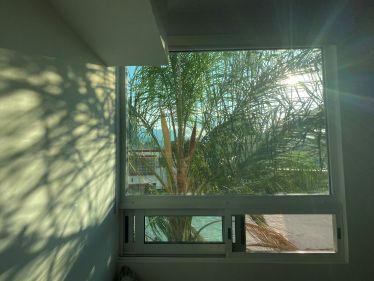 Schatten und Lichtspiel, Fenster mit Aussicht auf eine Palme
