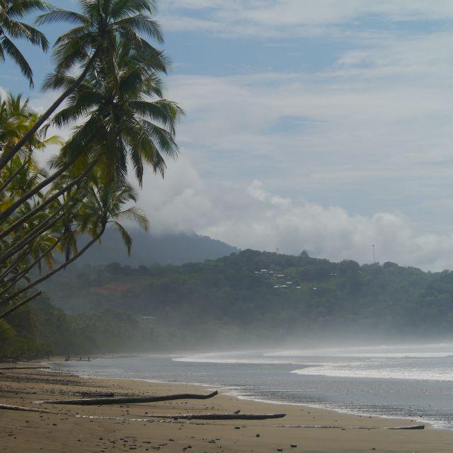 Hinter einem palmengesäumten Sandstrand sieht man in wolken gehüllte grüne Berge