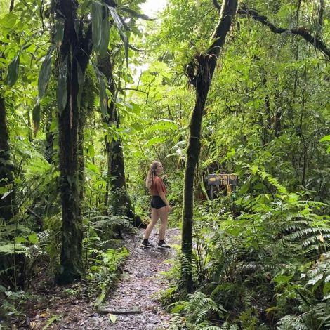 Carla steht im Regenwald an einer Abzeweigung, an der ein großes Schild die Wege markiert