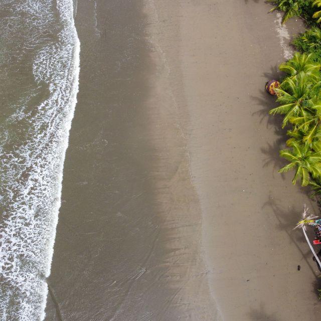 Luftaufnahme eines Strandabschnitts, auf der einen Seite sind grüne Palmen zu sehen und auf der anderen Seite kommen Wellen auf den Strand.