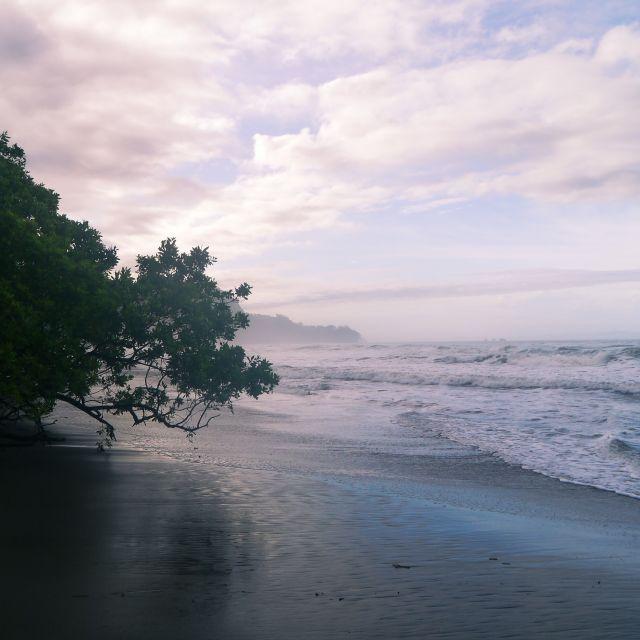 Ein Strand kurz nach Sonnenaufgang, der Himmel ist leicht rosa.