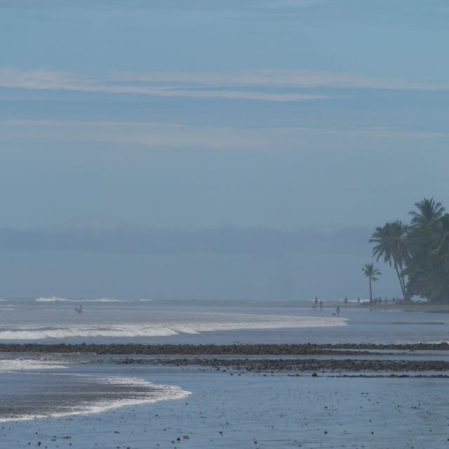 In der Ferne sind einige Palmen zu erkennen, davor eine weite Wasserfläche.
