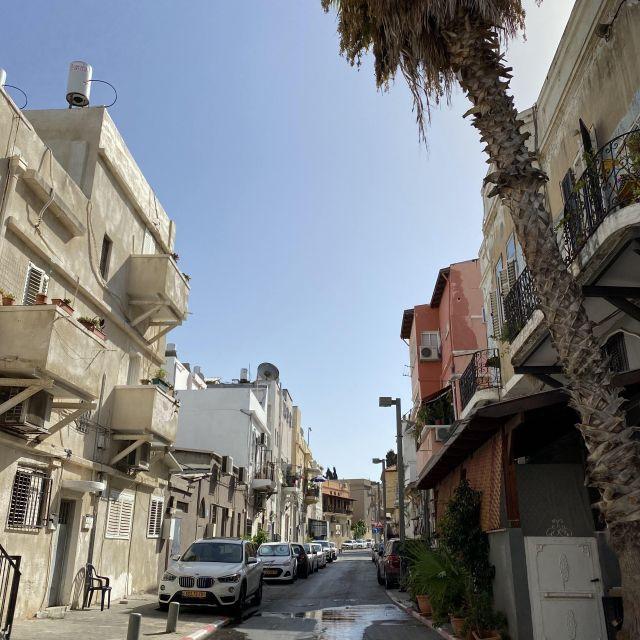 Zebrastreifen mit Straße und Palme