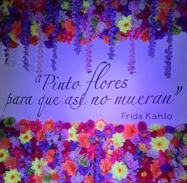 """""""Pinto floras, para que no se mueran"""", ein Zitat von der mexikanischen Künstlerin Frida Kahlo."""