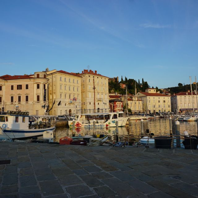 Ein kleiner Hafen mit Segelbooten und alten Häusern im Hintergrund.