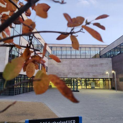Die Herbstfarben auf dem Campus sind ein Vorbote der #ReadingWeek! In der Mitte…