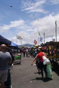 Marktstände auf einem großen aspaltierten Parkplatz. Menschen schieben Einkaufswagen hindurch.