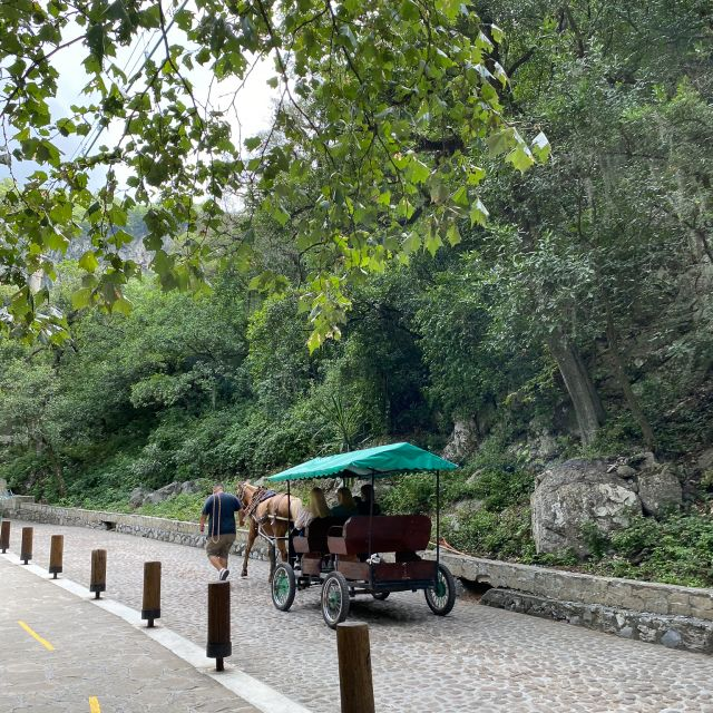 Pferdekutsche auf dem Weg zum Wasserfall