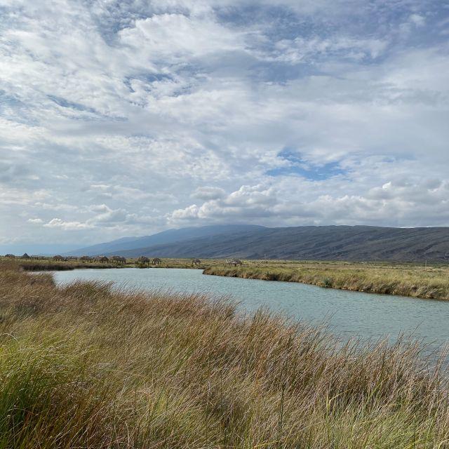 Der Fluss inmitten der Wüstenlandschaft