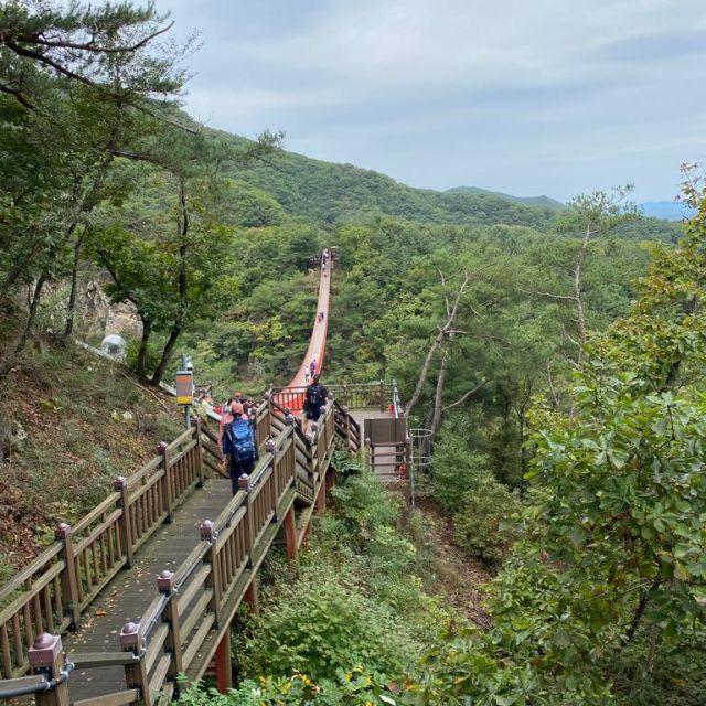 Die Hängeseilbrücke im Gamaksan valley