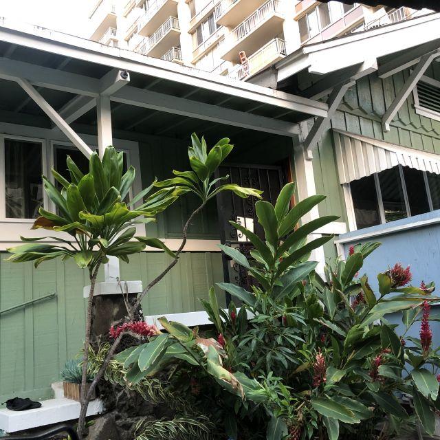 Das Airbnb von außen, welches Victoria gemietet hat.